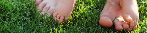 What is Earthing? Touching your bare feet to the Earth's surface... grass, sand, etc.