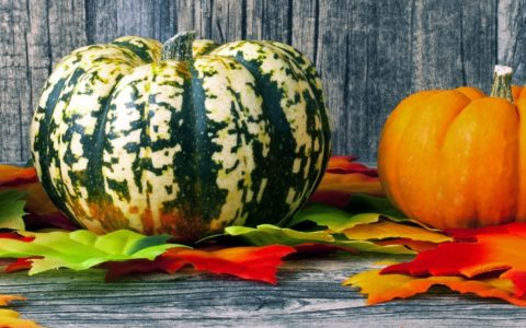 pumpkin recipes - soups and sides
